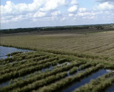 Aerial shot Small peat lakes at Fochtelo, Drenthe, The Netherlands Stock Footage