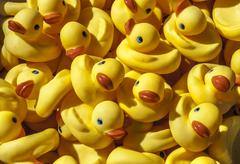 rubber ducks - stock photo