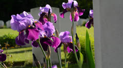 Flower decoration in front of the grave stone Stock Footage
