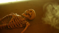 Crypt skeleton tomb Stock Footage