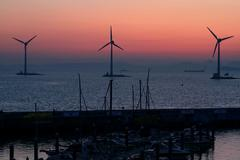 Wind Turbines & Yachts at Jeongok Marina, South Korea - stock photo