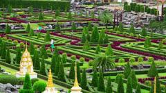 Nong Nooch tropical botanical garden in Thailand Stock Footage
