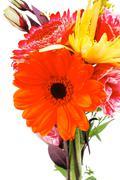 Red and orange gerbera, tuberose and gold mums Stock Photos