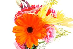 Flowers in bouquet isolated over white Stock Photos