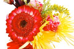 flowers in bouquet isolated over white - stock photo