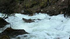 Raging flood river Reid Falls Skagway Alaska HD 7157 Stock Footage