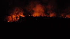 Stock Video Footage of flames and glow nightime fire / burning cane field, queensland , australia