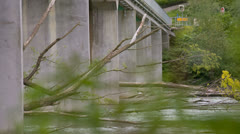 Close up of trees under river bridge Stock Footage