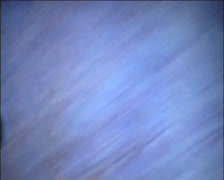 SUPER 8 - driving in the forest Stock Footage