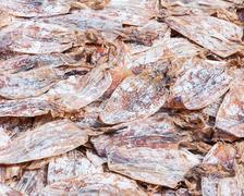 squid dry - stock photo
