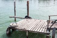 Stock Photo of small wooden pier