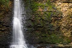 Vesiputous ja Rock Wall Kuvituskuvat