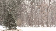 Heavy Snowfall with Large Snowflakes. - stock footage