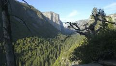 Yosemite LM20 Dolly Down Tunnel View El Capitan Stock Footage
