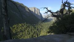 Yosemite LM21 Dolly Down Tunnel View El Capitan Stock Footage