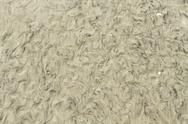Stock Photo of Wet Beach Sand Texture Pattern