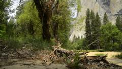 Yosemite LM31 Dolly CIrcular  R El Capitan Stock Footage