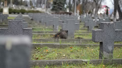 military graveyard vanishing point - stock footage