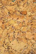 cork panel - stock photo