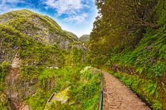 "Stock Photo of beautiful landscape on the island madeira with path near the ""levada"" to the"