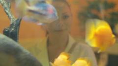 Girl enjoying views of tropical fish Yellow parrot Stock Footage