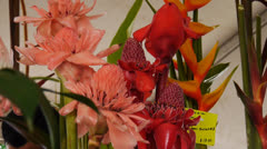 Country fair flowers 4 Stock Footage