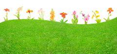 meadow of dreams - stock illustration
