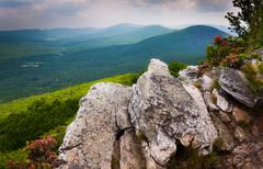 view of the ridge and valley appalachians from tibbet knob, in george washing - stock photo
