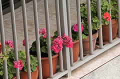 flowery balcony - stock photo