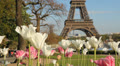 Springtime in Paris. Footage