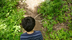 Boy Walking in Green Forest With Noisy Cicadas Stock Video - stock footage