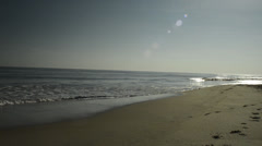 Dog Running Beside the Surf at Virginia Beach Stock Footage