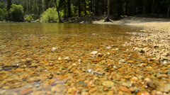 Stock Video Footage of Yosemite LM72 Merced River Cathedral Beach