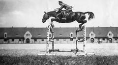 WW2 - Equestrian Sports - stock photo
