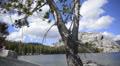 Yosemite LM86 Teneya Lake Circular Dolly R HD Footage