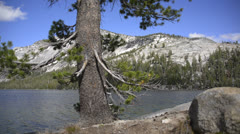Yosemite LM87 Teneya Lake - stock footage