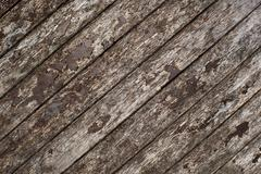 Stock Photo of Wooden texture decay