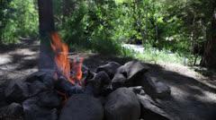 Yosemite Park Campfire Stock Footage