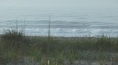 Ocean city nj surfer Stock Footage