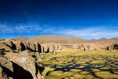 A desert on the altiplano of the andes in bolivia Stock Photos