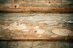 hoar plank pattern - stock photo