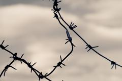 Barbed wire against moody sky. toned shot, closeup. Stock Photos