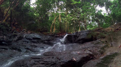 Tropical rain forest scenery landscape. Fresh water mountain river Stock Footage
