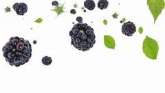 Blackberries falling down Stock Footage