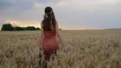 Young Woman Hand Caressing Field Summer Sunset Happiness Concept HD - stock footage
