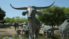 Bronze sculptures, cattle drive, pioneer plaza, dallas, texas, usa Stock Footage