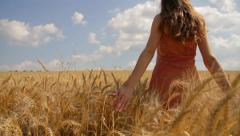 Happy Beautiful Model Hands Touching Wheat Field Walking Away Travel Concept  Stock Footage