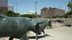 Bronze sculptures, cattle drive, pioneer plaza, dallas Stock Footage