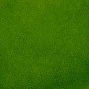 Green leather texture closeup Stock Photos