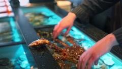 Restaurateur holds living crab and puts them in aquarium Stock Footage